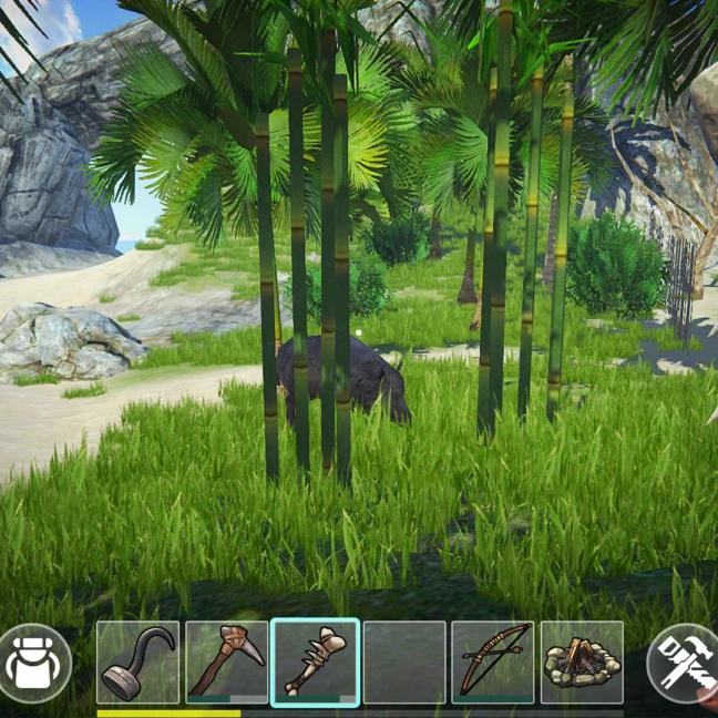 SURV screenshot Last Pirate 06