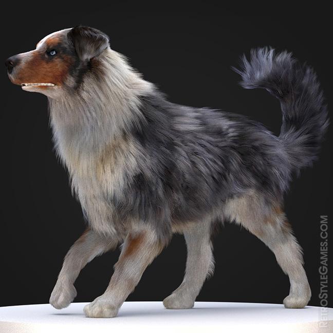 Dog Shepard Rigging Skinning Animation FX Hair Fur